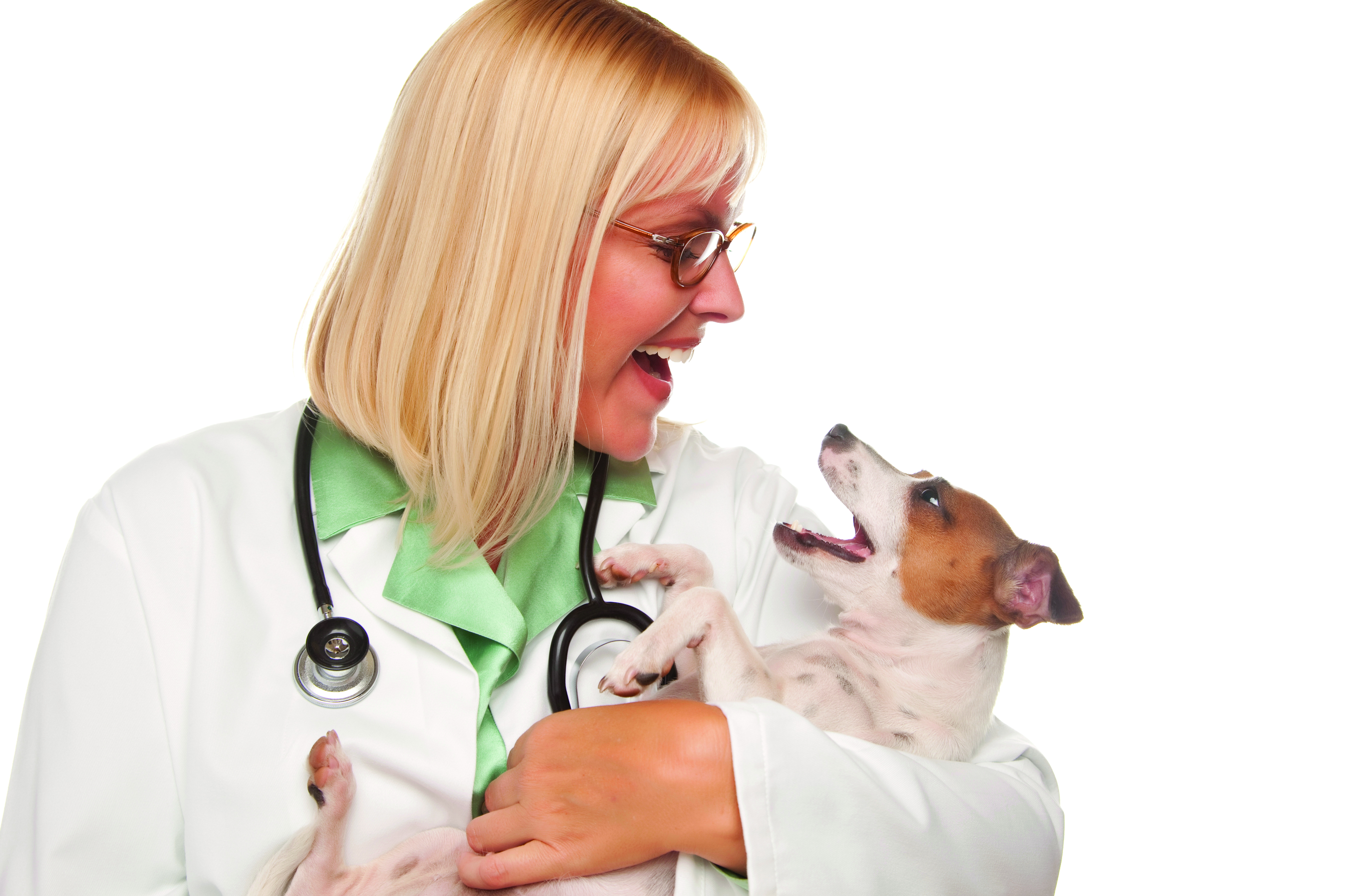 Attractive Female Veterinarian Doctor with Small Puppy