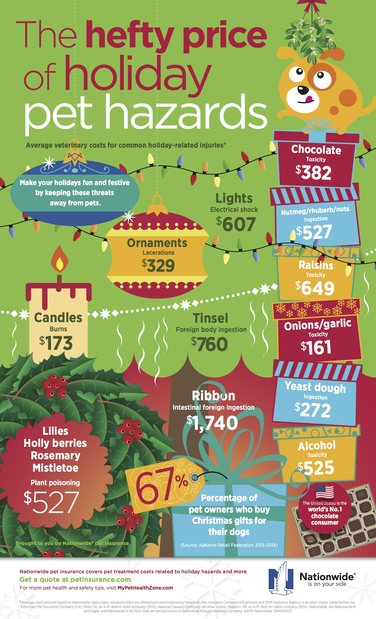 Holiday Dangers to Pets Infographic_NW